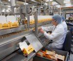 sausainiu fabrikas